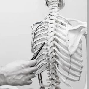 Функционална анатомия на йога пълен курс